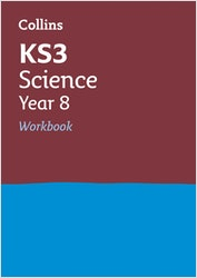 KS3 Science Workbook (Ages 12-13)